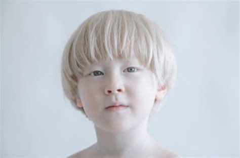 merak albino bilamana burung merak albino membuka sayapnya bagaikan