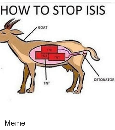 How To Meme - 25 best memes about isis goat isis goat memes