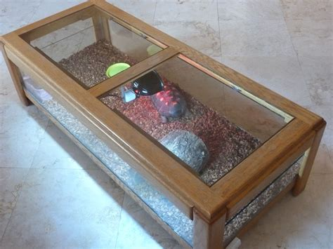 coffee table reptile terrarium tortoise coffee table terrarium projects