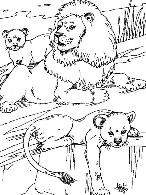 lion cubs realistic familycorner com 174