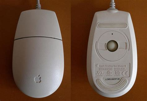 the evolution of the apple mouse pics