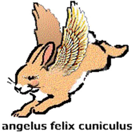 Sicilian Birth Records Works Angelo F Coniglio