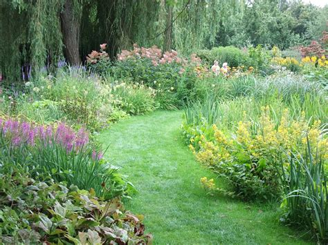 a watery gem of a garden the patient gardener