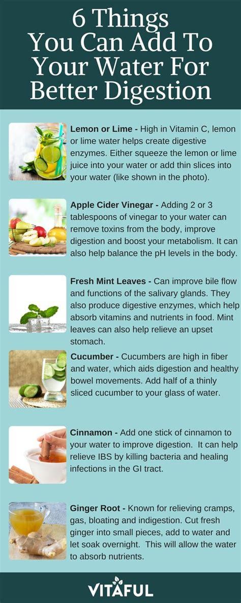 Can You Detox While On Antibiotics by Best 25 Vinegar Weight Loss Ideas On Cider