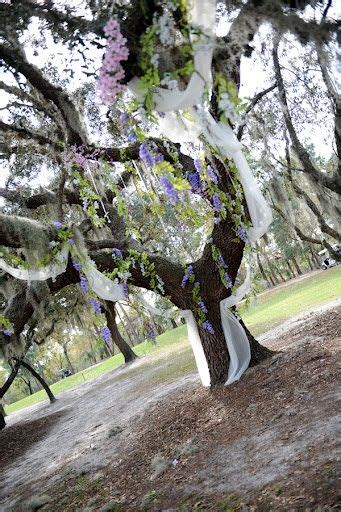 Wedding Ceremony Tree by Wedding Wedding Ceremony Tree Wedding Tree Wedding
