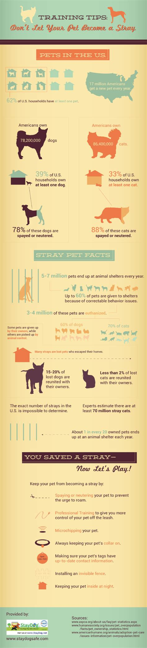 how to house train a stray dog 20 awesome infographics on pets infographics graphs net