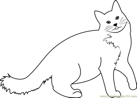 happy cat coloring page a very happy cat coloring page free cat coloring pages