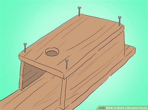 how to build a bluebird house plans how to build a bluebird house plans numberedtype