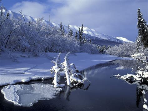 beautiful alaska beautiful christmas pictures and graphics free to enter