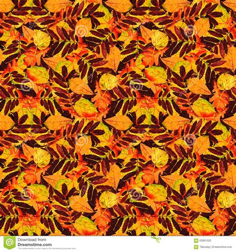 watercolor seamless pattern with pink and orange autumn seamless floral pattern autumn leaves stock illustration