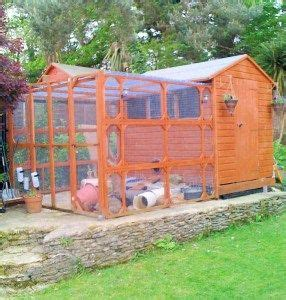 Do Rabbits Shed by 40 Best Images About Rabbit Housing On