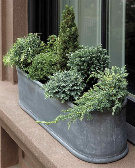 Gardening Container Ideas Container Garden Ideas For Any Household Martha Stewart