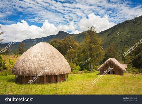 hut indonesia traditional huts papuans in wamena papua new guinea