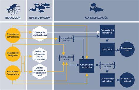 cadenas productivas construccion peces para la vida plataformas de pesca y piscicultura