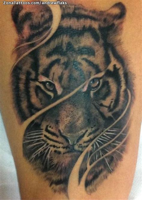 imagenes de tatuajes de garras de tigres m 225 s de 25 ideas en tendencia sobre tatuaje de tigres en