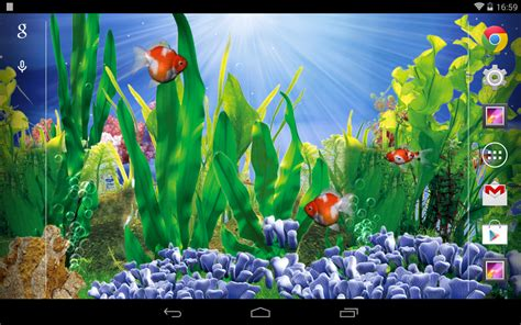 goldfish themes for windows 7 3d goldfish live wallpaper android apps on google play