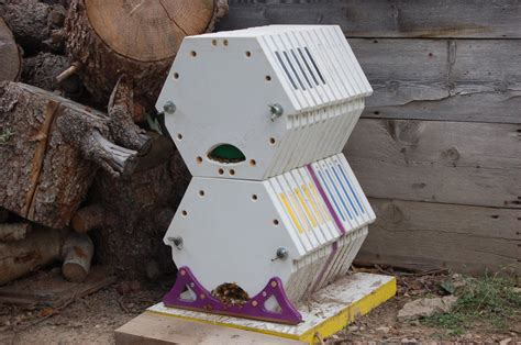 hive modern bee barrels a whole new hive using modern technology