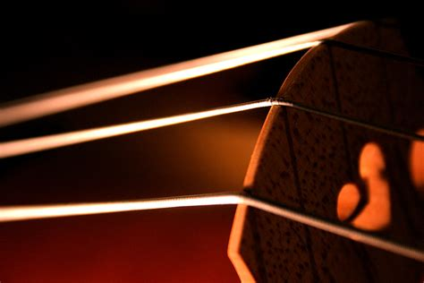 What Is String - cello strings deography by o donnell