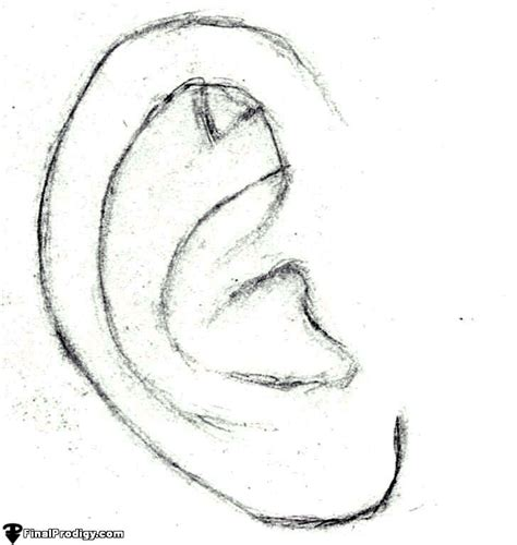 how to sketch how to sketch an ear finalprodigy