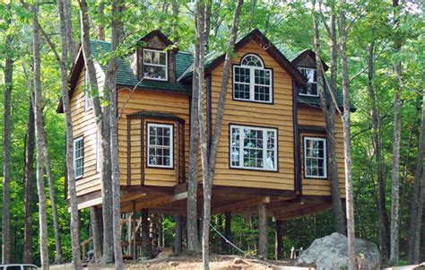 grand designs house in the woods propertyinvesting net property investment news why not live in a treehouse man