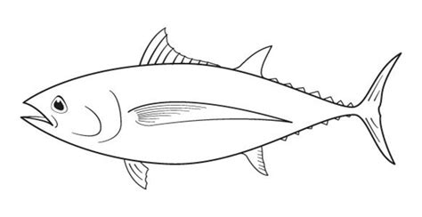 tuna coloring pages