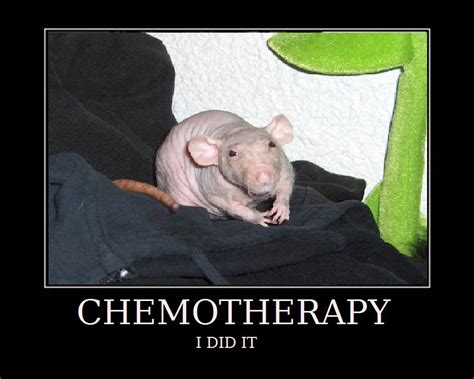 Chemo Meme - chemotherapy meme by askell on deviantart