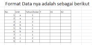 Format Data Adalah | tutorial eviews import data panel file ms excell dan