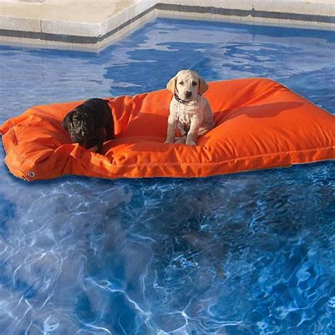 floating dog bed pet kai pool float frontgate dog bed eclectic pet