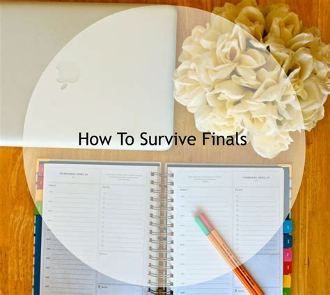 secrets of a college student tips on how to survive college