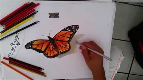 imagenes mariposas volando para hi5 como dibujar una mariposa monarca en 3d youtube