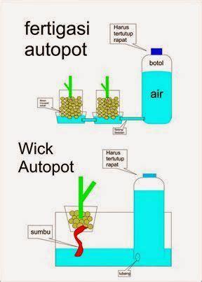 cara membuat larutan nutrisi hidroponik ab mix hydroponics 50 best images about hydroponics on pinterest gardens