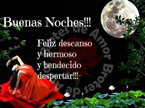 imágenes bonitas de buenas noches con rosas desea unas buenas noches con rosas imagenes muy bonitas