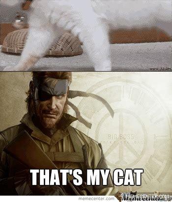 Thats My Fetish Meme - that s my cat meme cat planet cat planet