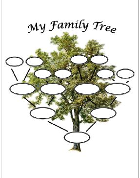 Me And My Family Tree By Joan Sweeney Buku Import Anak 1 librarianism chronicles s day family tree