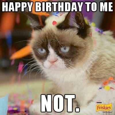 Birthday Meme Grumpy Cat - today april 4th is international grumpy cat day to mark