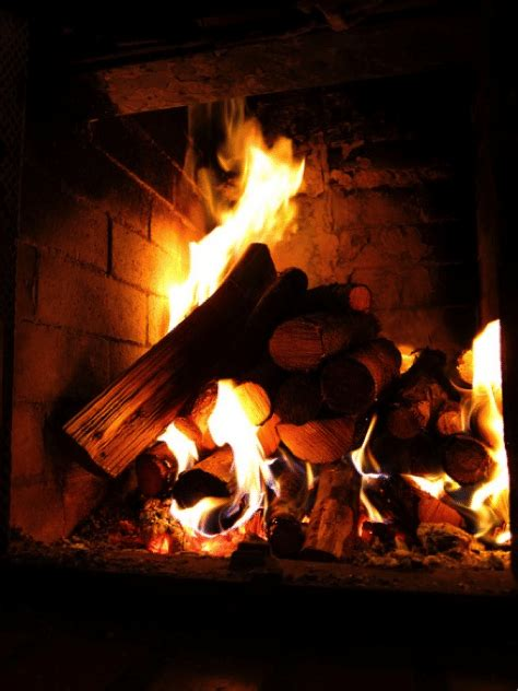 wood burning fireplace vs gas gas versus wood burning fireplace chimney and wildlife