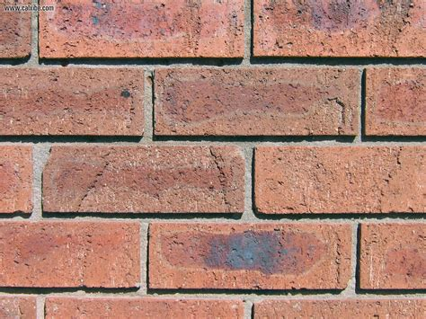 gambar wallpaper batu bata jual batu bata merah murah info bisnis properti foto