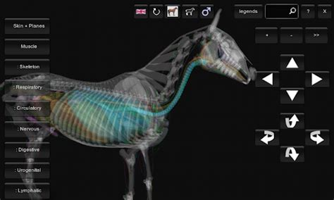 best anatomy software 3d anatomy software android apps on play