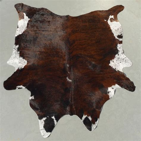 best 25 animal skin rug ideas on navy and