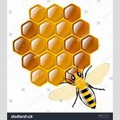 Honey Bee Honey...