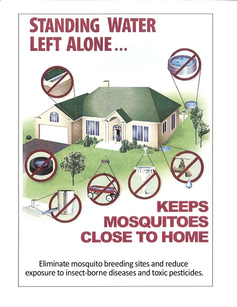 how to kill mosquito in bedroom mosquito in bedroom best free home design idea