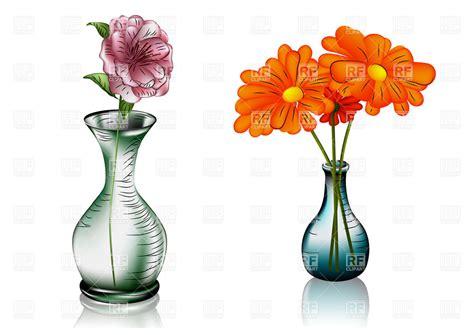 two glass vases with flowers 27591 plants and animals