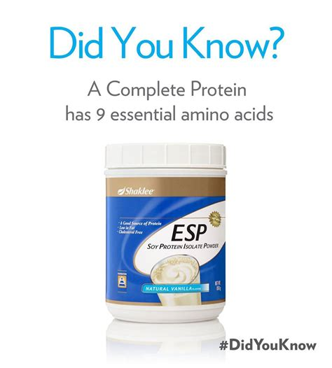 b protein powder contains supplement for power of protein for lasting