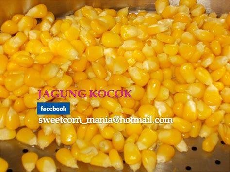 desain gerobak jagung manis jagung manis pipilan by jagung kocok 17 171 sweetcornmania