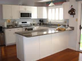 Kitchen Cabinet White Paint by Remarkable Kitchen Cabinet Paint Colors Combinations
