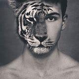 Half Lion Half Tiger Art | 500 x 500 jpeg 41kB
