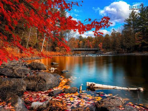 imagenes no realistas de paisajes paisajes naturales captura el mundo