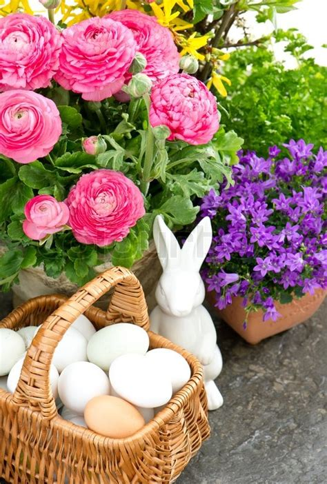 Home Painting Color Ideas Interior Beautiful Spring Flowers With Easter Decoration Stock