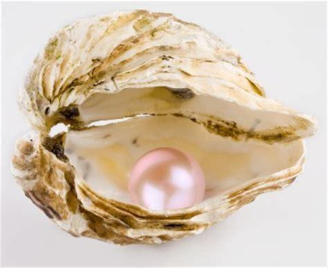 wallpaper pink mutiara when i m deep inside my shell the musings of a