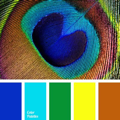 peacock feather colors colors of peacock feathers color palette ideas